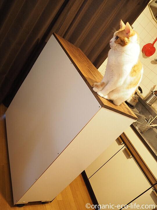 台所カウンター