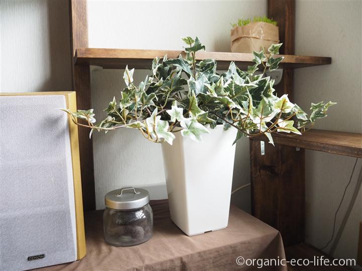 アイビーの人工観葉植物