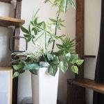 「ブルーミングスケープ」オリジナルの人工観葉植物