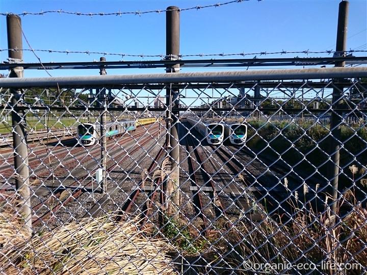 西武線の電車