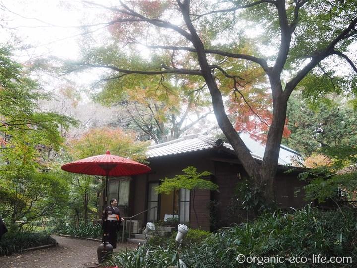 睡足軒の紅葉