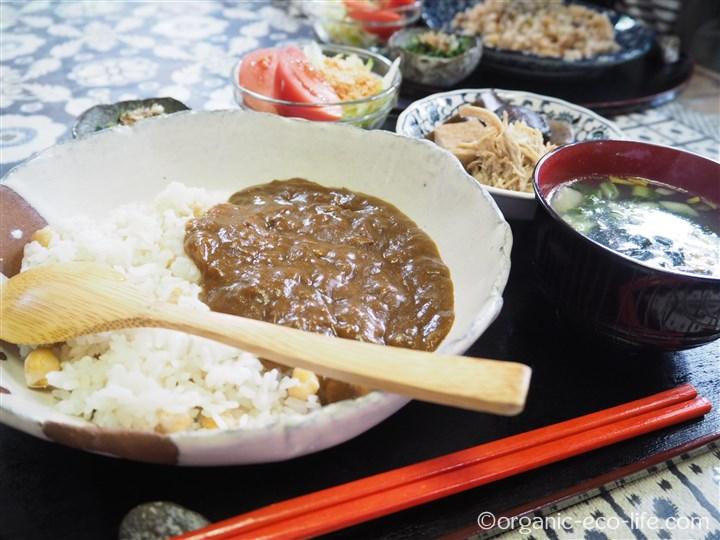 チキン豆カレー