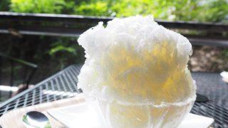 【ときがわ町】かき氷専門店「山田屋」で天然氷のかき氷を食べました
