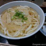 【福岡空港】「因幡うどん」でごぼう天うどんを食べました