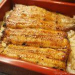 「渋谷松川 本店」でふっくら美味しい国産うなぎの鰻重を食べました